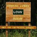 ¡Trucos anti estrés que funcionan!