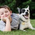 5 razones por las que los niños deben tener mascotas-MainPhoto