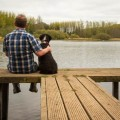 8 razones por las que las mascotas son mejores que los antidepresivos-MainPhoto
