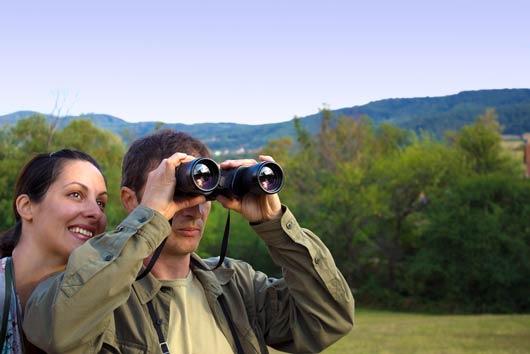 15 razones por las que la observación de aves es el yoga de la naturaleza-MainPhoto