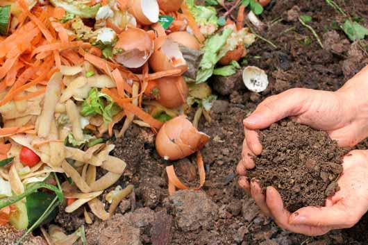14 razones por las que todos deberían aprender de abono