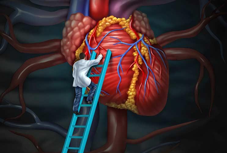 15 cosas sobre las enfermedades del corazón que todos los latinos deberían saber