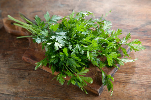 15-Herbs-That-Can-Help-You-Kick-the-Salt-Trap-photo14