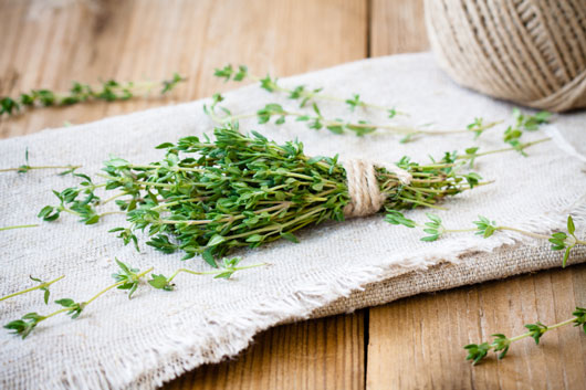 15-Herbs-That-Can-Help-You-Kick-the-Salt-Trap-photo2