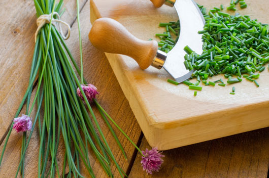 15-Herbs-That-Can-Help-You-Kick-the-Salt-Trap-photo5