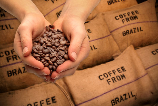 The-Java-Report-10-Reasons-Why-Latinos-Should-Drink-Coffee8