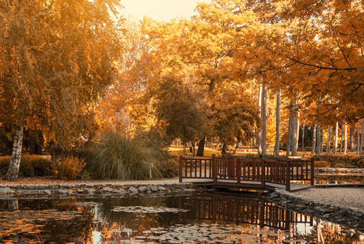Autumn-Journeys-9-Fall-Family-Trips-to-Keep-Things-Happy-photo6