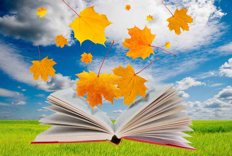 Falling-Gently-into-Fall-20-Books-About-Starting-Fresh-to-Dive-Into-Now-MainPhoto