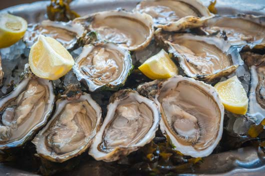 Oh,-Shuck-You-15-Things-to-Know-About-Eating-Oysters-MainPhoto