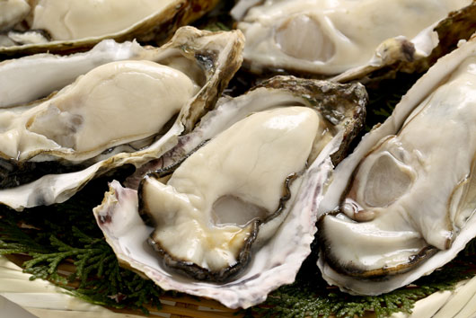 Oh-Shuck-You-15-Things-to-Know-About-Eating-OystersDKTR-photo3