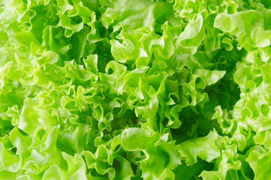 Getting-Beyond-Kale-14-Greens-You-Need-in-Your-Diet-photo2