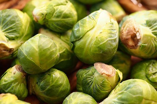 Brussels-Muscle-10-Brussels-Sprouts-Recipes-to-Get-You-Through-Winter-MainPhoto