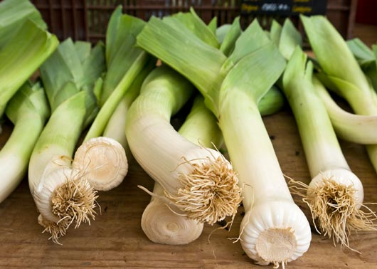 Leek-Love-15-Leek-Recipes-to-Try-Right-Now-MainPhoto