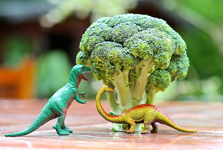 7-Kid-tested-Broccoli-Recipes-that-Always-Win-MainPhoto