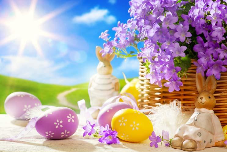Cómo actualizar una búsqueda de huevos de pascua-Mainphoto