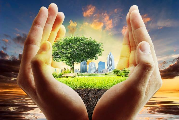 Por el Día de la Tierra y el Día del Árbol Cultiva un jardín con tus hijos-MainPhoto