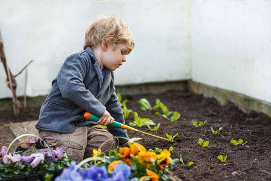 Por-el-Día-de-la-Tierra-y-el-Día-del-Árbol-Cultiva-un-jardín-con-tus-hijos-photo3