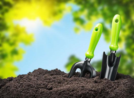 Tips de jardinería para prepararnos para la primavera - Mamiverse