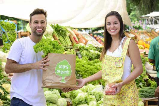 20-ideas-para-una-luna-de-miel-ecológica-para-la-pareja-eco-amigable-Photo12