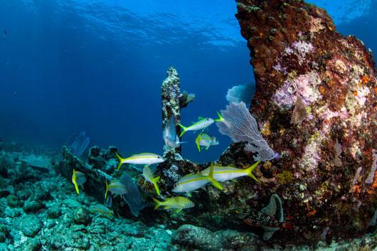 7-tipos-de-viajes-de-pesca-para-realizar-este-verano-Photo2
