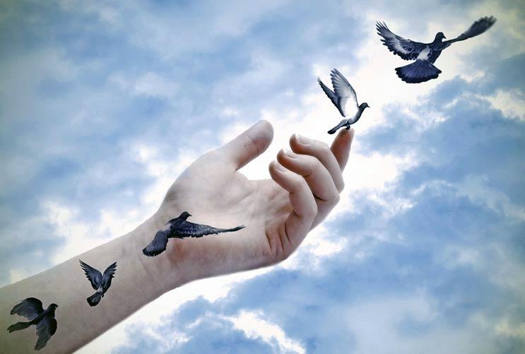 Gente-pacífica-Comunicación-no-violenta-(CNV)-y-por-qué-funciona-MainPhoto