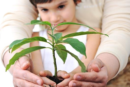 Familia floral Tips de jardinería para niños-MainPhoto
