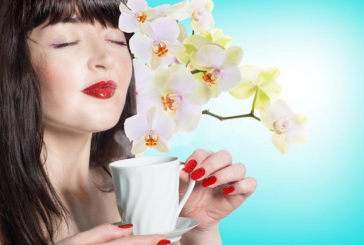Hojas de esplendor 15 datos que te ayudarán a preparar el mejor té-MainPhoto