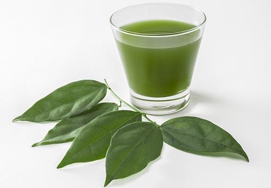 Más allá del jugo verde 10 razones por las que deberías de beber clorofila líquida-MainPhoto