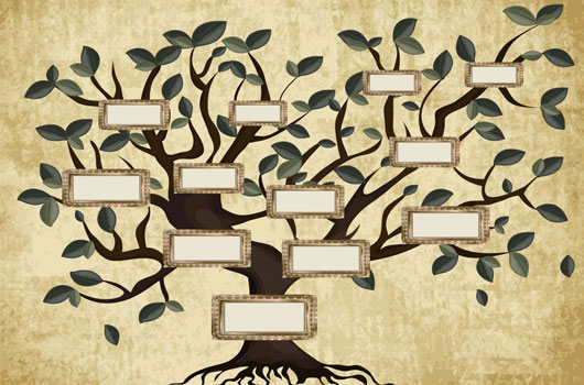 Control-de-parentesco-Cómo-rastrear-tu-linaje-y-hacer-tu-árbol-genealógico-Photo3