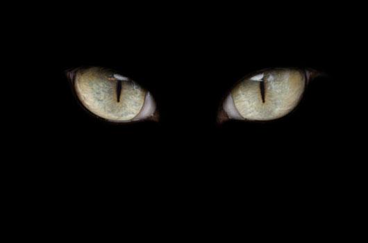 Revisión-de-tabú-de-dónde-vienen-las-supersticiones-MainPhoto