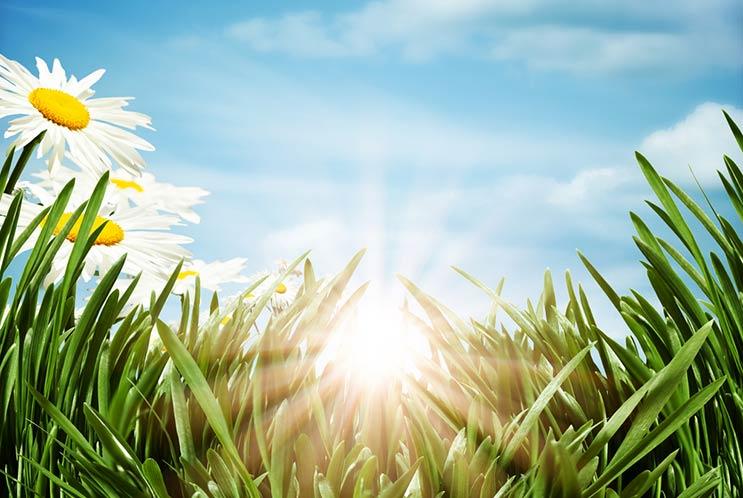 Por-qué-el-cambio-de-horario-de-verano-es-medicina-para-nuestra-alma-MainPhoto
