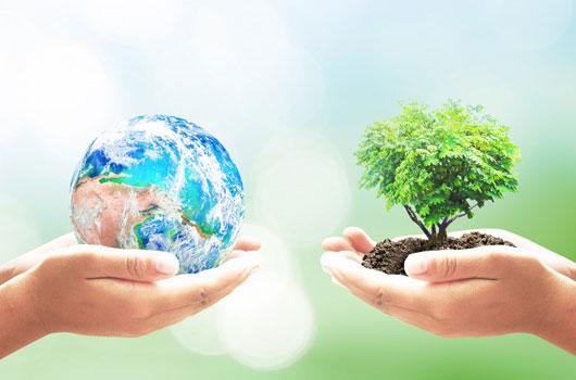 8-actividades-significativas-para-el-Día-de-la-Tierra-Photo