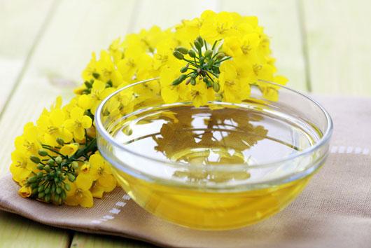 Selección-aceitosa-Qué-aceite-usar-en-la-cocina-Photo2