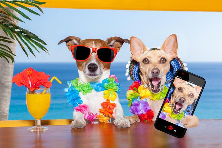 18 citas maravillosas sobre el humor para que mantengas bien y contenta-MainPhoto copy