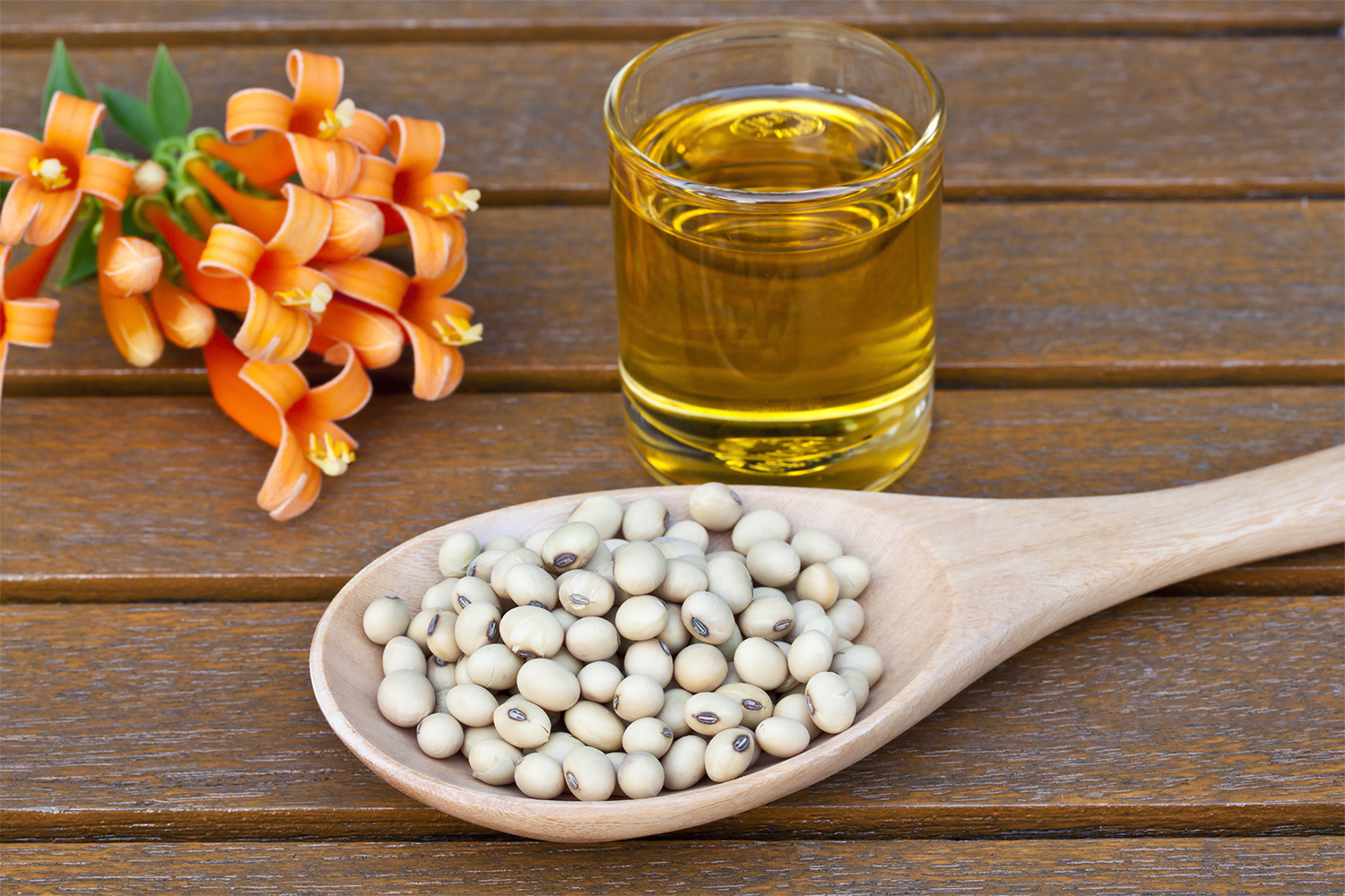 soybean-oil-benefits