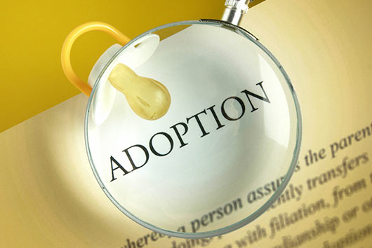 A-Successful-Adoption-Story,-Part-2-MainPhoto