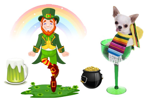 Leprechauns-and-Chihuahuas-Stereotypes-Latinos-Share-with-the-Irish-MainPhoto