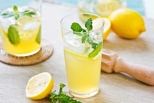 Hibiscus Lemonade-MainPhoto