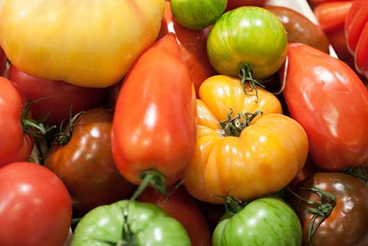 Heirloom Tomatoes-MainPhoto