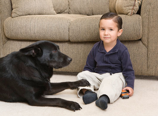 Why-Pets-Are-Great-for-Kids-MainPhoto