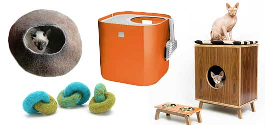 Cool Accessories for Stylish Pets