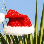 How-to-Enjoy-the-Holidays-When-You-Don't-Celebrate-Christmas-MainPhoto