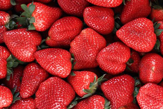 Festive Strawberry Tamales-MainPhoto