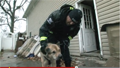 Humane Society Helping Pets After Superstorm Sandy