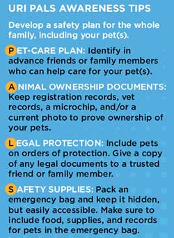 NYC Domestic Violence Shelters Accept People AND Pets-Photo2