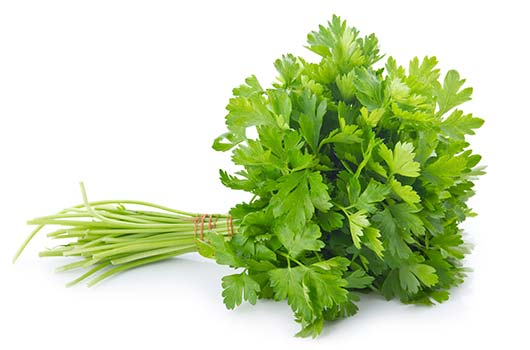 Fried-Parsley-Tacos-MainPhoto