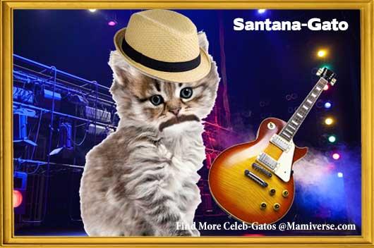 Carlos Santana-Gato Black Magic Kitty!-MainPhoto