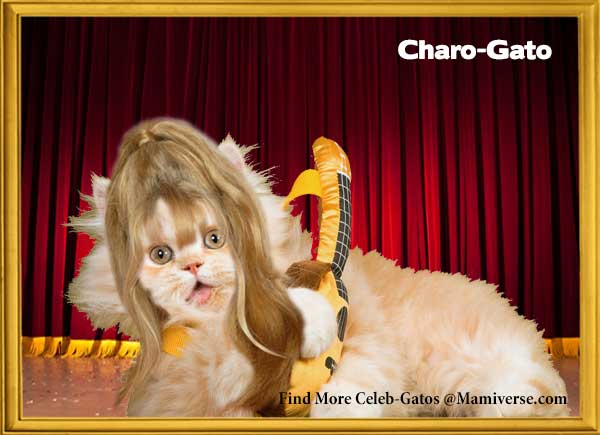 Charo-Gato Celebrates Herself!-SliderPhoto