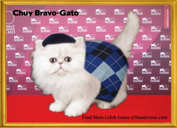 Chuy Bravo-Gato On His Own Terms!-SliderPhoto