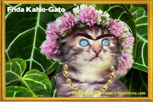 Frida Kahlo-Gato, Purrrr Genius!-MainPhoto
